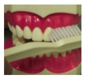 toothbrush San Jose